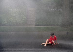 """Ode to Summer"" by Robert George"